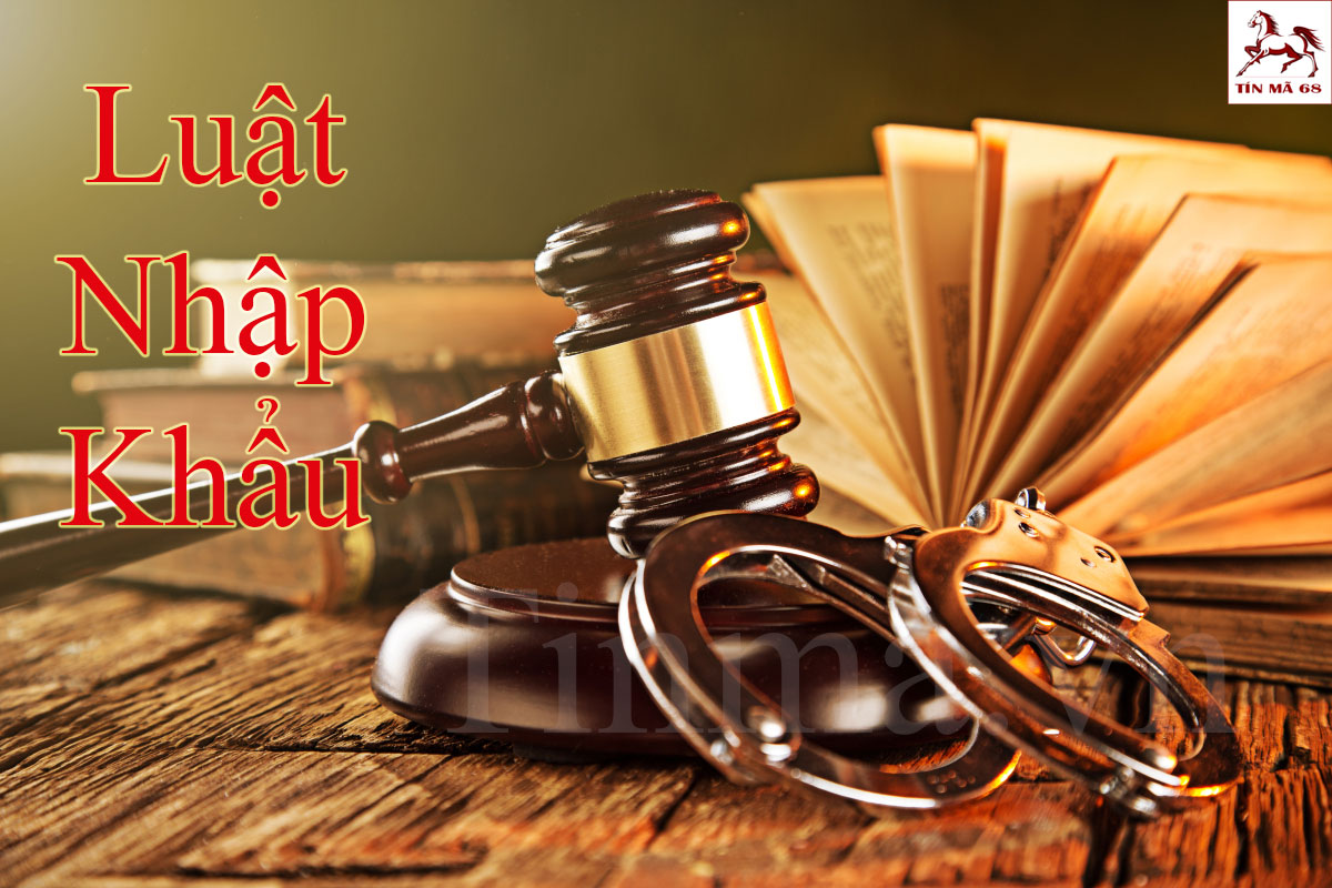 luat-kinh-doanh-hanh-hoa-nhap-khau